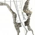 ponte della catena schizzo